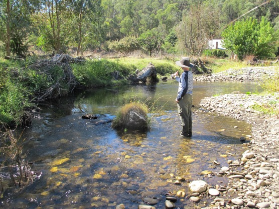 Learn to fly fish , Melbourne, Victoria.