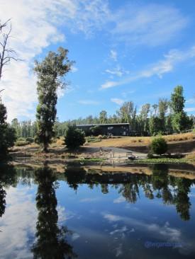 Saladin Lodge, reflections on the Lake