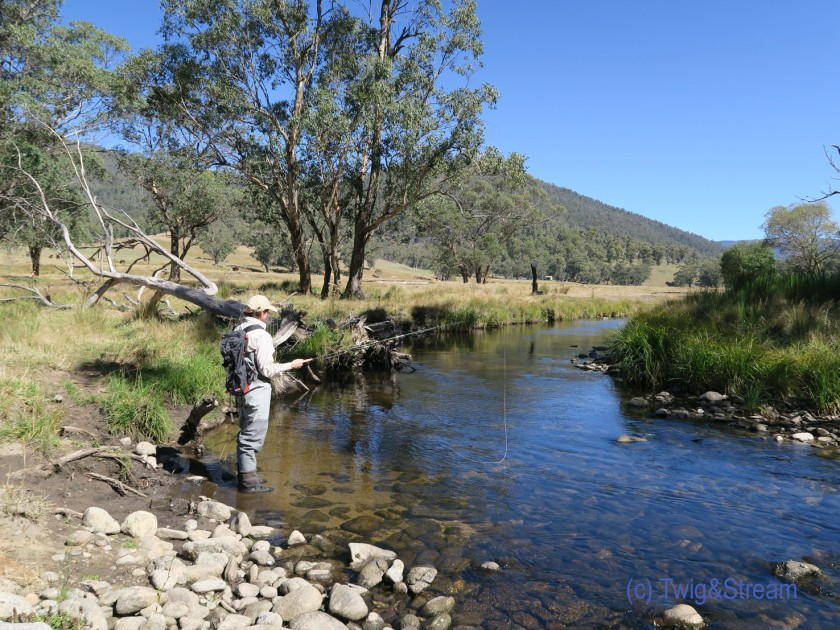 High country fly fishing Victoria.