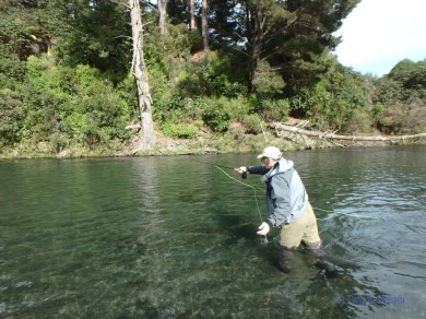Fly fishing on the mighty Tongariro in New Zealand